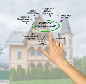what is rochester property management